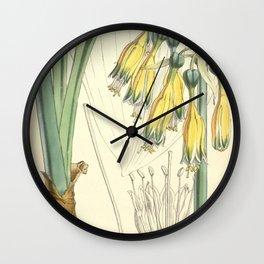 4952 Wall Clock