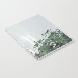 Succulents & Shadows Notebook
