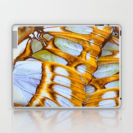 Colden Colors – Wing Series Laptop & iPad Skin