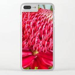 Red Waratah Flower Clear iPhone Case