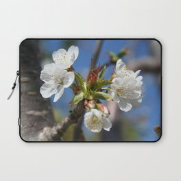 Cherry Blossom In Spring Sunlight Laptop Sleeve