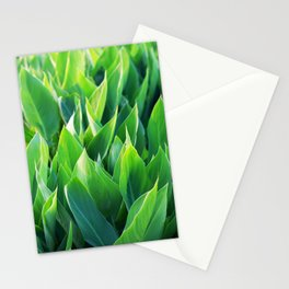Green leaves so beautiful. Stationery Cards