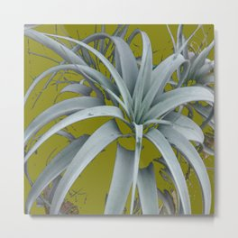 GRACEFUL GREY SUCCULENT GARDEN PLANT MODERN ART Metal Print