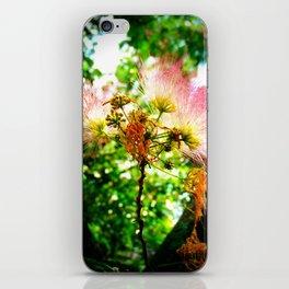Mimosa Flower iPhone Skin
