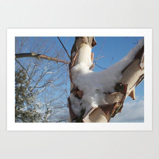 Snowy Sky Art Print