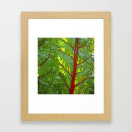 bloodstream III Framed Art Print