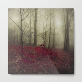 Hidden Place Metal Print