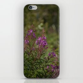 Yukon Fireweed iPhone Skin