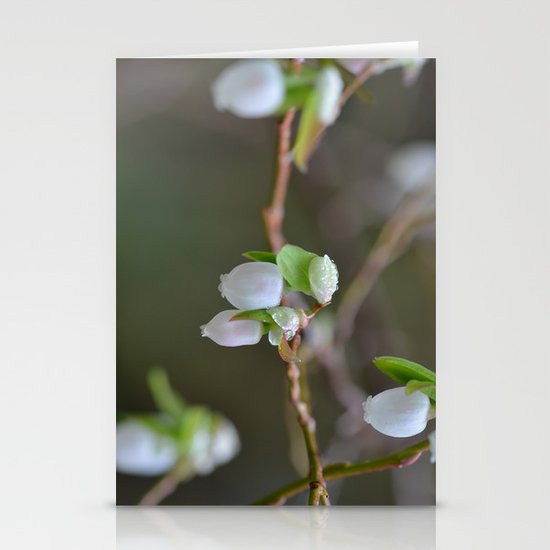 Wild Blooms Stationery Cards