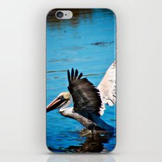 We Have Liftoff iPhone & iPod Skin