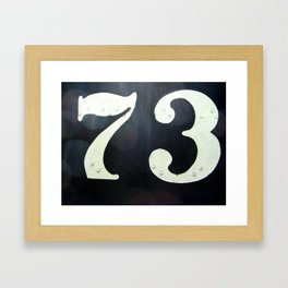 73 Framed Art Print