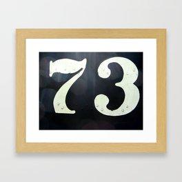 73 Framed Art Print