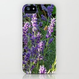 Bumblebee 10 on lavender ahem honey bee actually iPhone Case