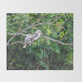 Kookaburras Throw Blanket
