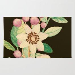 Spring Bouquet On Black Background Rug