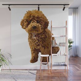 Ginger the Toy Poodle Wall Mural