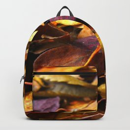 Fall Leaves Close Up Backpack