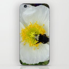 White Iceland Poppy iPhone Skin