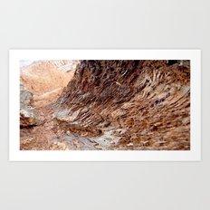 Barren Art Print