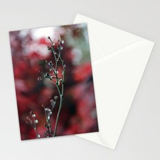 November Rain and Acer Bokeh Stationery Cards