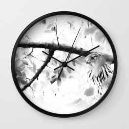 PLOTTING Wall Clock