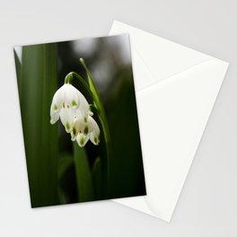 White Snowflake Flower Botanical Art, Nature Print, White Spring Flowers Stationery Cards