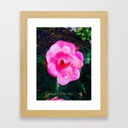 Pink Roses Don't Get Any Love - Pink Rose Framed Art Print