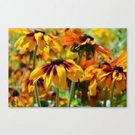 Flower meadow 128 Canvas Print