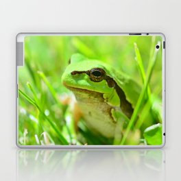 Green European Tree Frog Laptop & iPad Skin