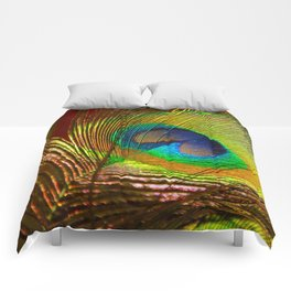 Peacock's Love Comforters