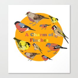Charm of Finches Canvas Print
