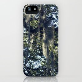 sunlight and moss in the trees iPhone Case