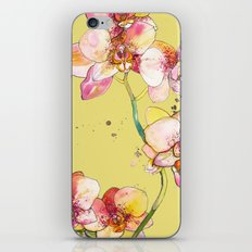 Pink Orchids in Yellow iPhone & iPod Skin
