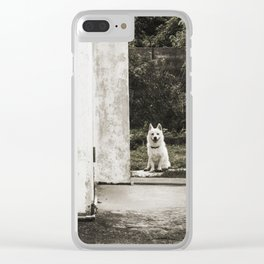 Onna happy dog Clear iPhone Case