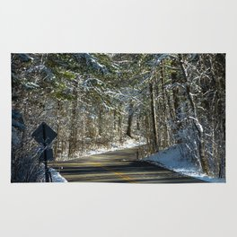 Early Winter in Itasca State Park Rug