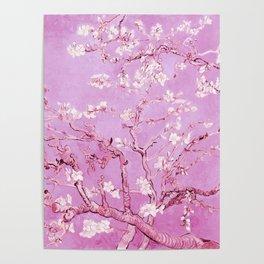 Vincent Van Gogh Almond BlossomS. Pink Lavender Poster