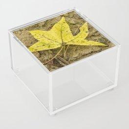 The Yellow Leaf Acrylic Box