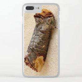 BUFF TIP MOTH Phalera bucephala Clear iPhone Case