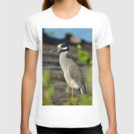 Yellow Crown Night Heron T-shirt