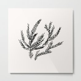 Summer Coral Fern Metal Print