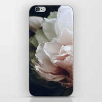 renaissance iPhone & iPod Skins featuring Renaissance  by Shannon Marie