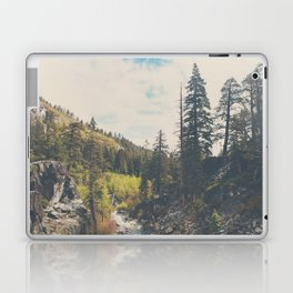 into the wild ...  Laptop & iPad Skin