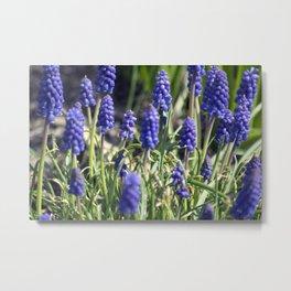 Spring Flowers Series 15 Metal Print