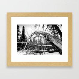 Bent Tree Framed Art Print