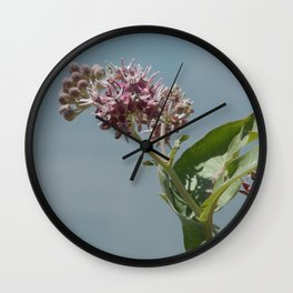 Summer milkweed flowers Wall Clock