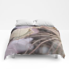 Mauve Comforters