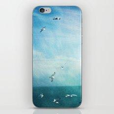 brighton seagulls 3 iPhone & iPod Skin