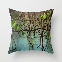 las casas verdes  Throw Pillow