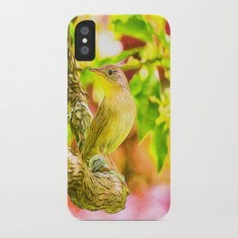 Painted House Wren iPhone Case