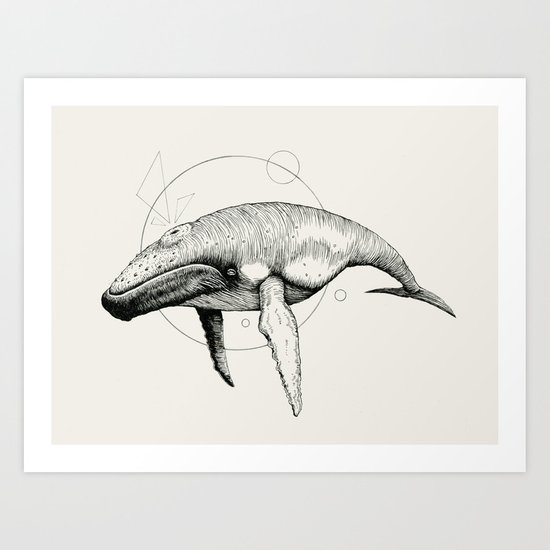'Wildlife Analysis VII' Art Print